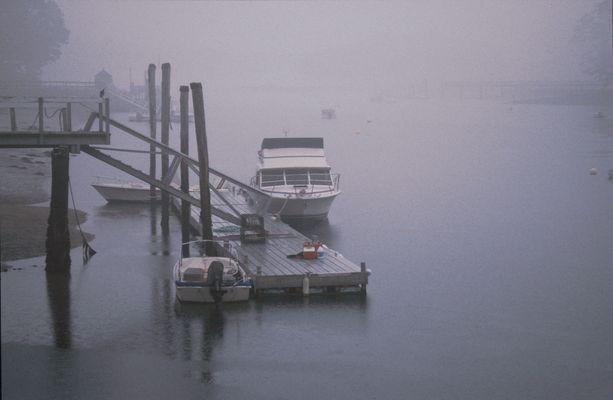Fog in Main