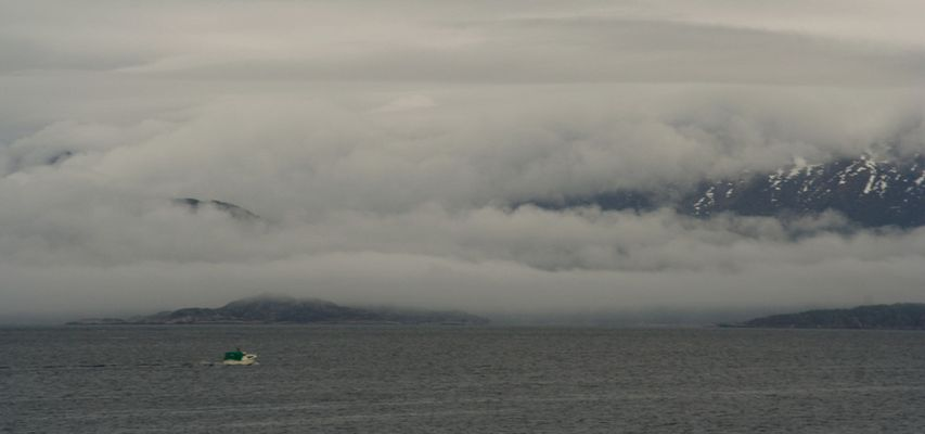 fog-ocean