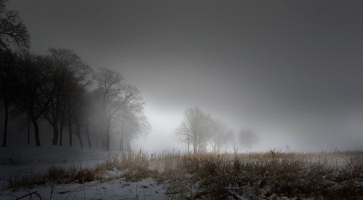 fogday