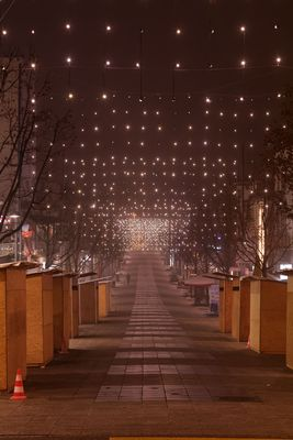 Foggy city at night