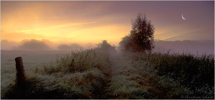 foggy daybreak