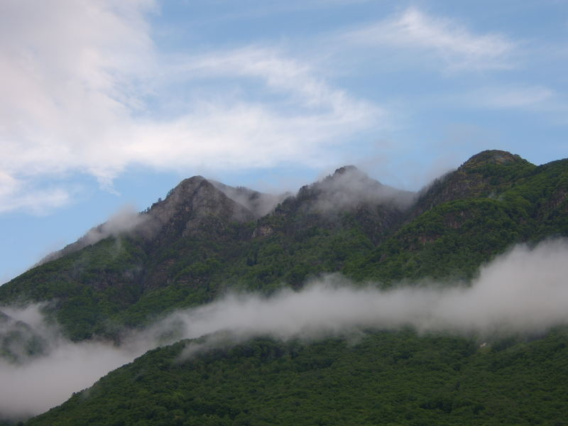 Foggy hills - No purple pills !
