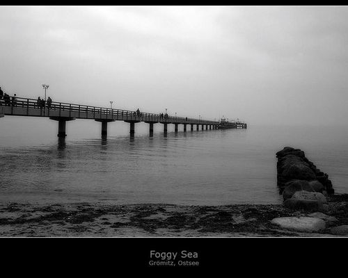Foggy Sea