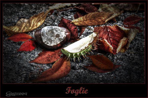Foglie...de LUIGI TARASCA