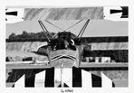 Fokker DR I - Chase View
