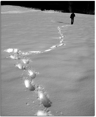 follow ...
