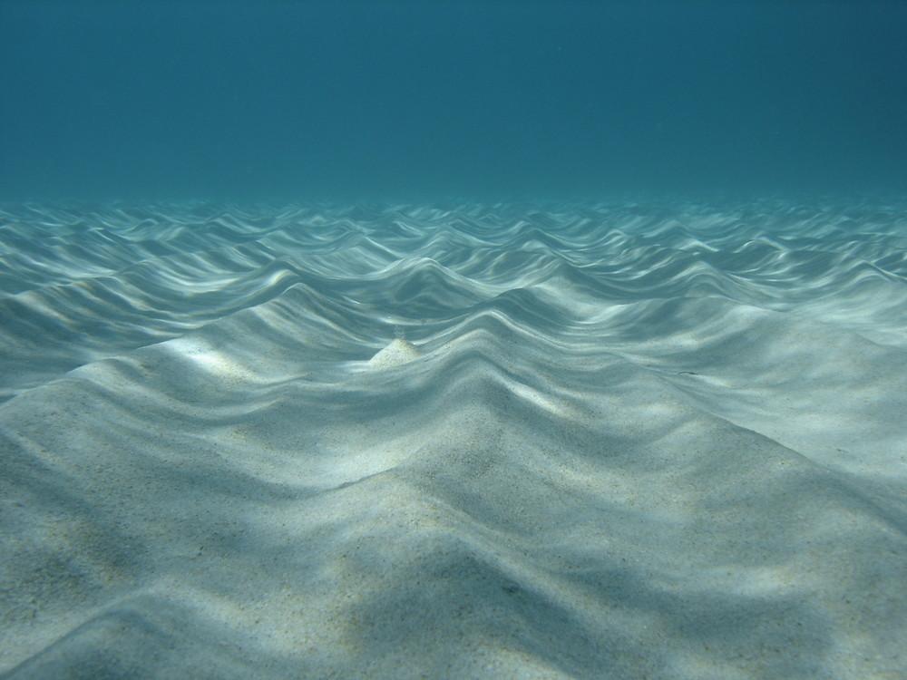 Fond sous marin de Corse