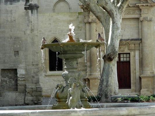 fontaine d'avignon