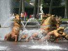 fontaine et chevaux aux grandes eaux du chateau de Versailles