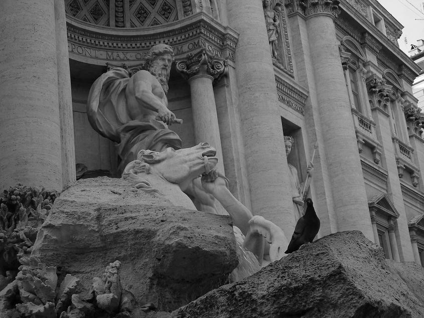 Fontana di Trevi con l'ospite