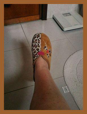 Foot in WC ( Protest Bild ).
