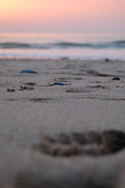 ...footprint...