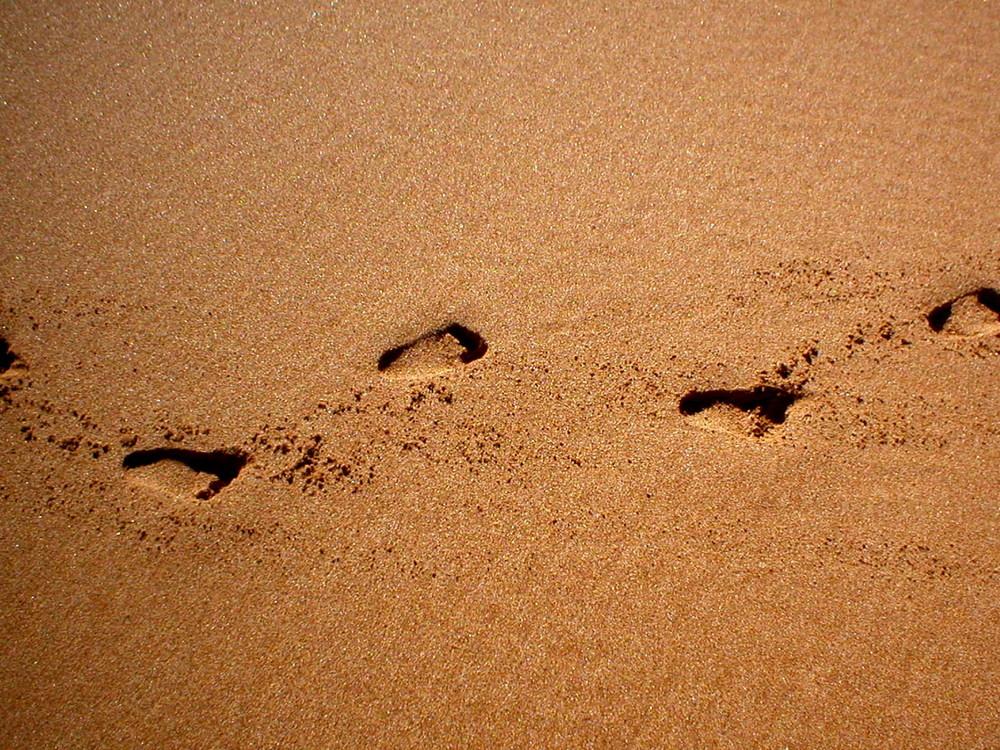 Footprints in the Australian Sand