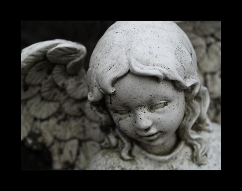 For my fallen Angel