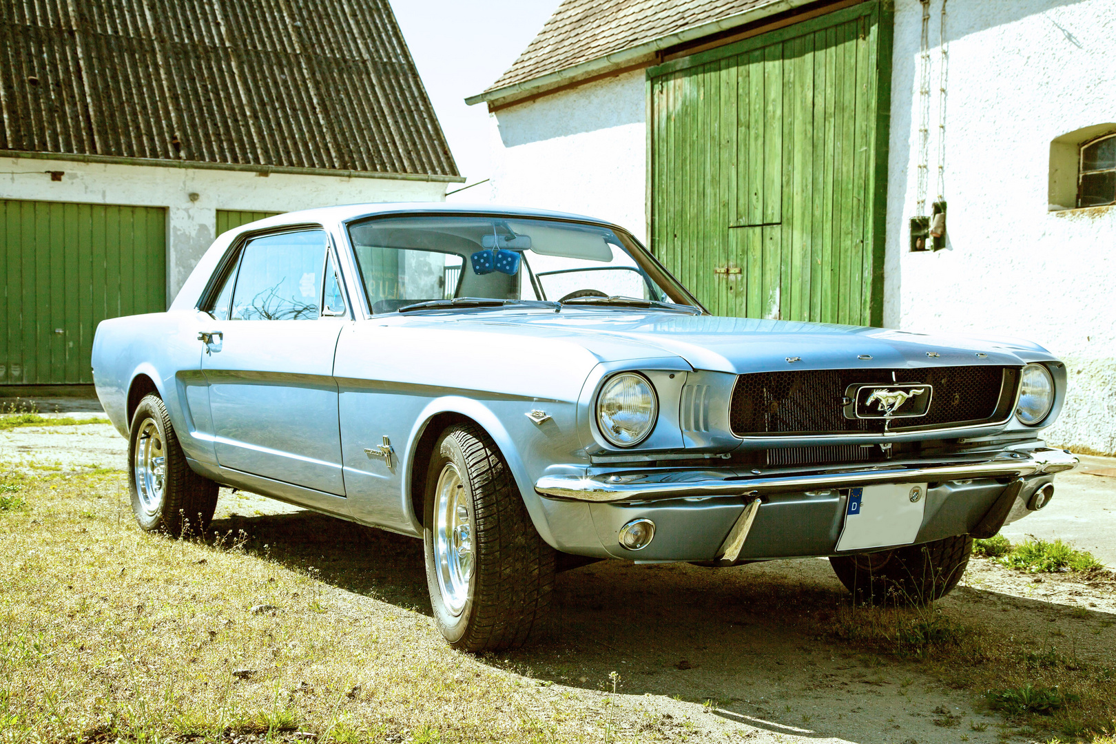 Ford Mustang in a old Farm II