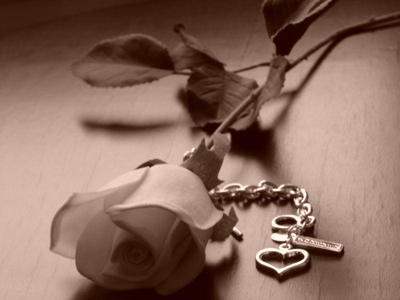 forever N love