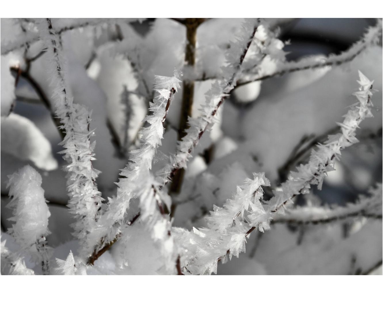 Form aus Eis und Wind