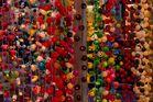 Formen und Farben 41