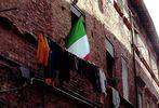 Forzza Italia.................