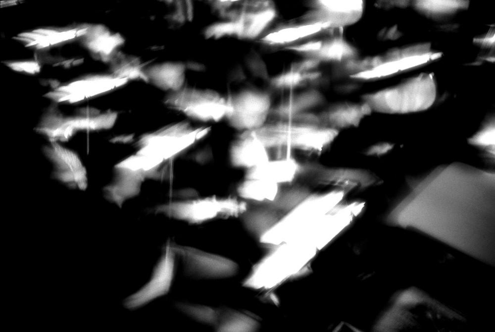 fossa dell'orchestra 3