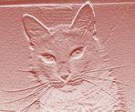Fossilcat.