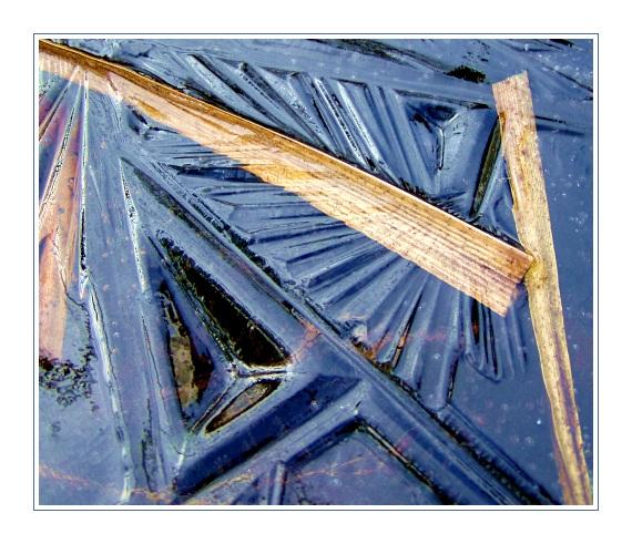 Foto aus der Eiszeit
