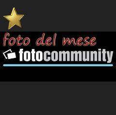 Foto del Mese... Canale