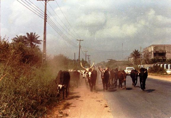 Foto di mio padre: Nigeria, 1982_2