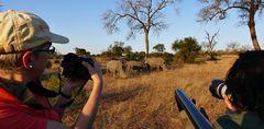Foto- und Erlebnisreise -Südafrikas Tierwelt- Impression 021