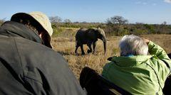Foto- und Erlebnisreise -Südafrikas Tierwelt- Impression 050