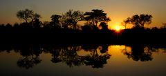 Foto- und Erlebnisreise -Südafrikas Tierwelt- Impression 053
