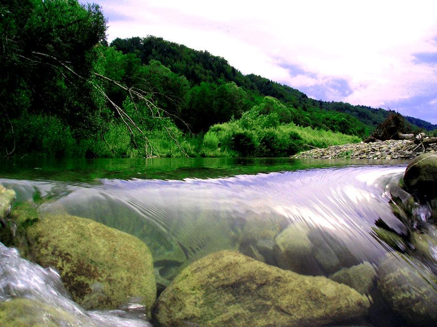 Foto vom selbstgebauten Staudamm