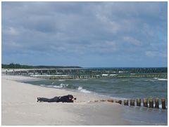 Fotofreak am Strand von Zingst