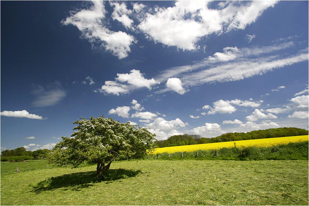 Fotogene Landschaft