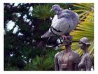 Fotograf mit Vogel