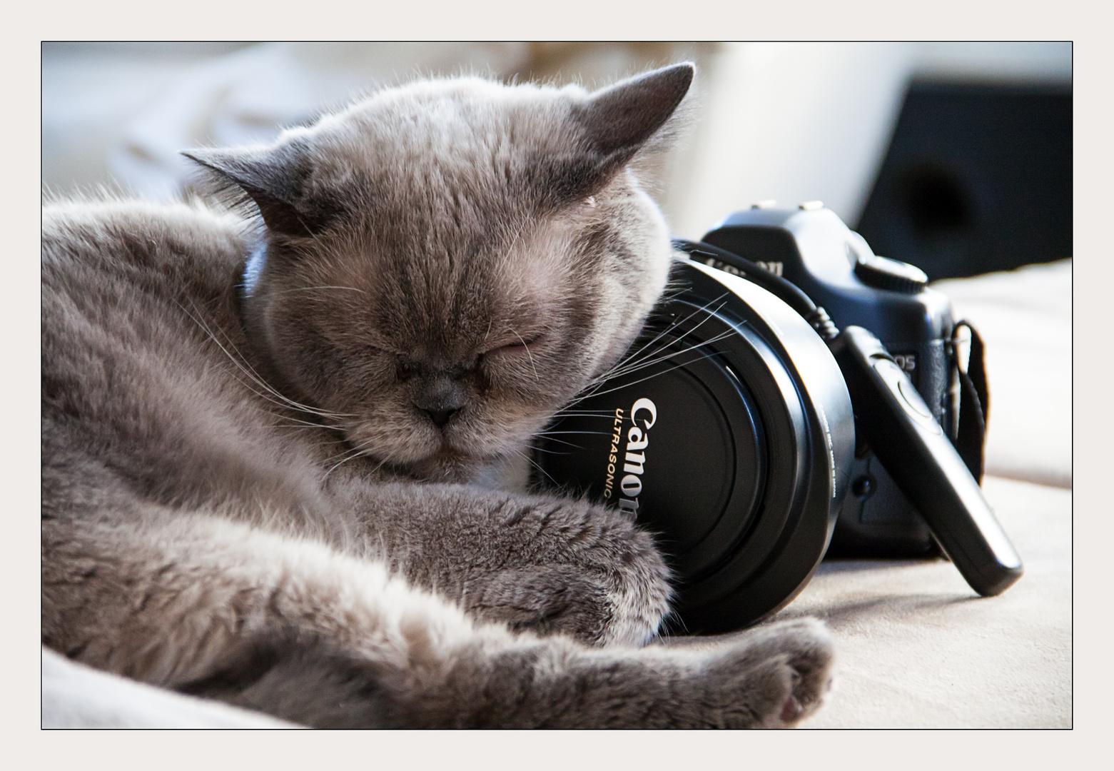 Fotografieren macht so müde