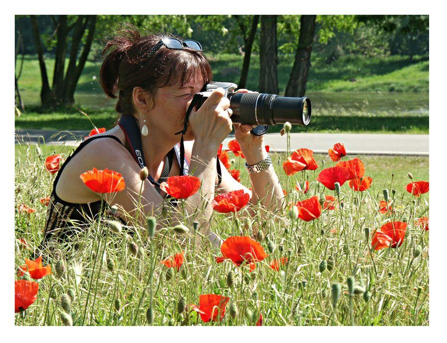 Fotografin im Mohn