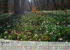 Fotokalender - Thüringer Landschaften - März 2014