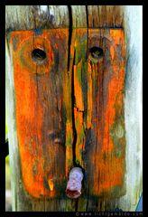 Fotokunst - Christine von Wiegen - Lichtgemälde - Holz und Co. 07