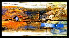Fotokunst - Christine von Wiegen - Lichtgemälde - Holz und Co. 10