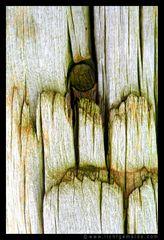 Fotokunst - Christine von Wiegen - Lichtgemälde - Holz und Co. 15