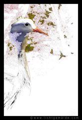 Fotokunst - Christine von Wiegen - Lichtgemälde - Tierisch 06