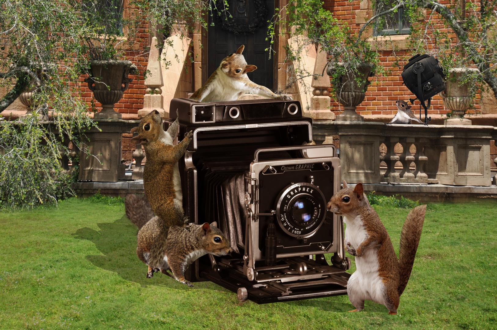 Fotomatones