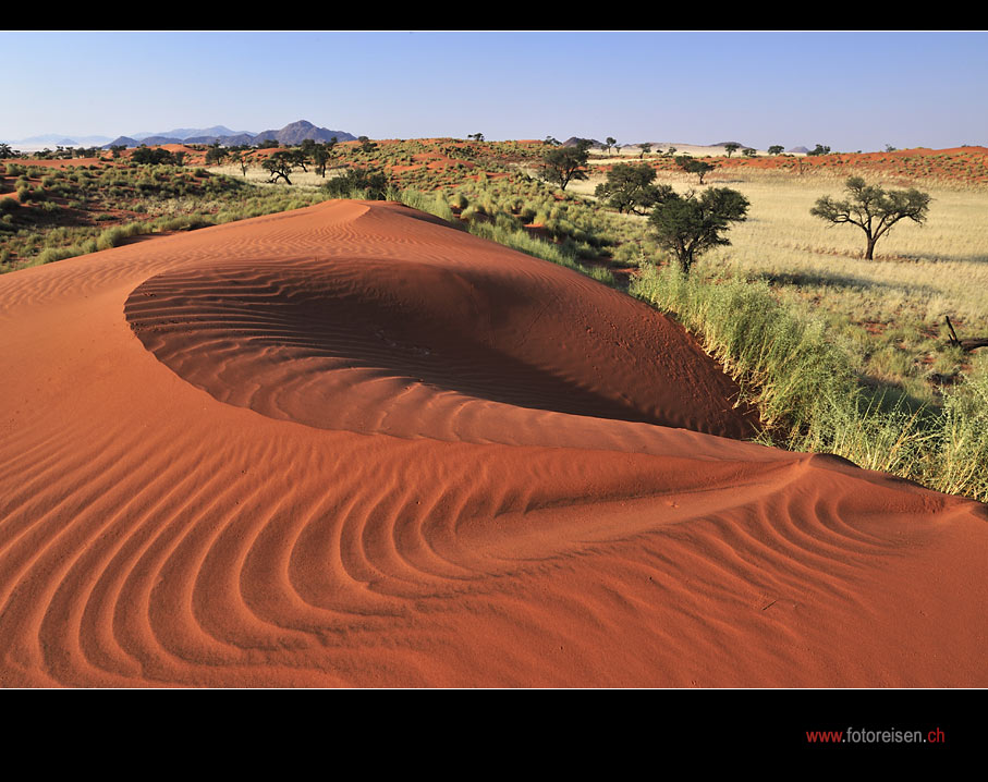 Fotoparadies Wüste Namib IV