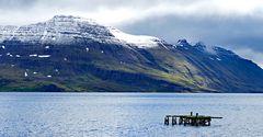 Fotoreise Island Westfjorde (Östliche Küste) im Mai 2018 / Impression 12