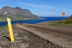 Fotoreise Island Westfjorde (Östliche Küste) im Mai 2018 / Impression 14
