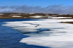 Fotoreise Island Westfjorde (Östliche Küste) im Mai 2018 / Impression 19