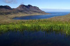 Fotoreise Island Westfjorde (Östliche Küste) im Mai 2018 / Impression 24
