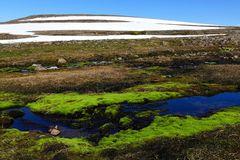 Fotoreise Island Westfjorde (Östliche Küste) im Mai 2018 / Impression 35