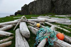 Fotoreise Island Westfjorde (Östliche Küste) im Mai 2018 / Impression 37